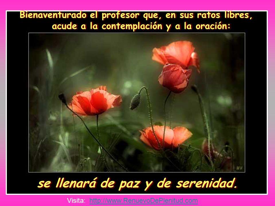 Bienaventurado el profesor que, en sus ratos libres, acude a la contemplación y a la oración: se llenará de paz y de serenidad.