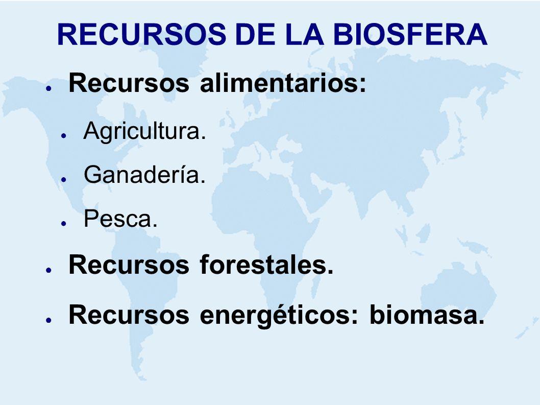 RECURSOS DE LA BIOSFERA Recursos alimentarios: Agricultura. Ganadería. Pesca. Recursos forestales. Recursos energéticos: biomasa.