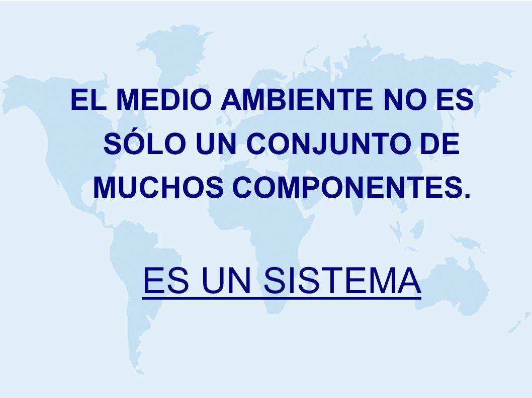 EL MEDIO AMBIENTE NO ES SÓLO UN CONJUNTO DE MUCHOS COMPONENTES. ES UN SISTEMA