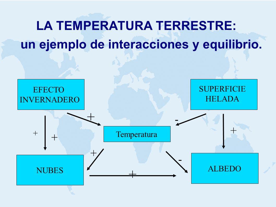 LA TEMPERATURA TERRESTRE: un ejemplo de interacciones y equilibrio. Temperatura ALBEDO NUBES EFECTO INVERNADERO SUPERFICIE HELADA + + + + - + - +