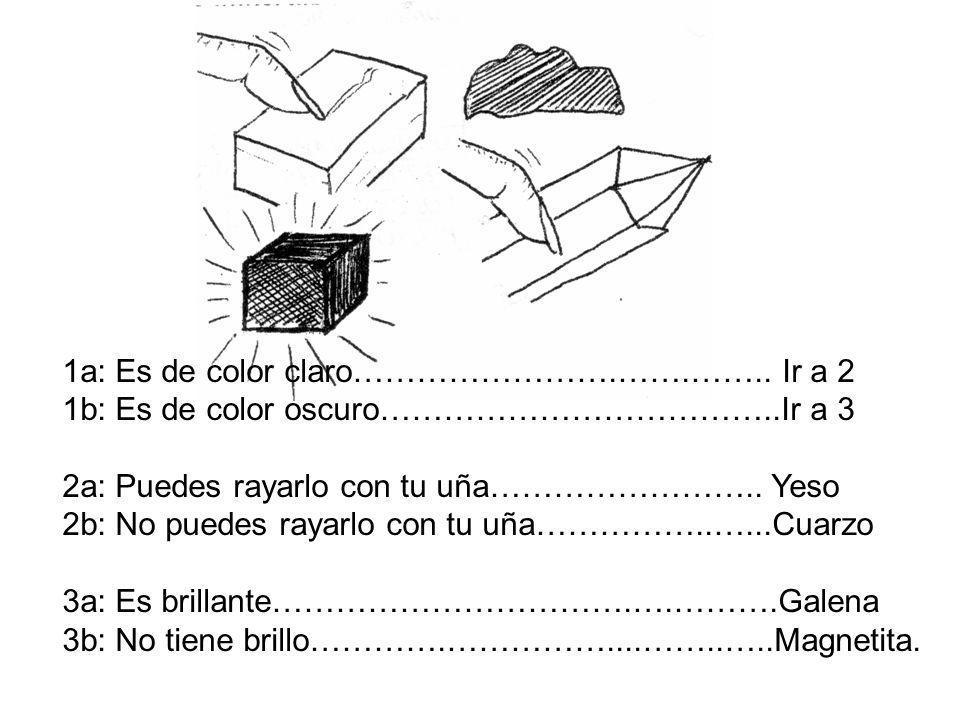 1a: Es de color claro…………………….…….…….. Ir a 2 1b: Es de color oscuro………………………………..Ir a 3 2a: Puedes rayarlo con tu uña…………………….. Yeso 2b: No puedes ray