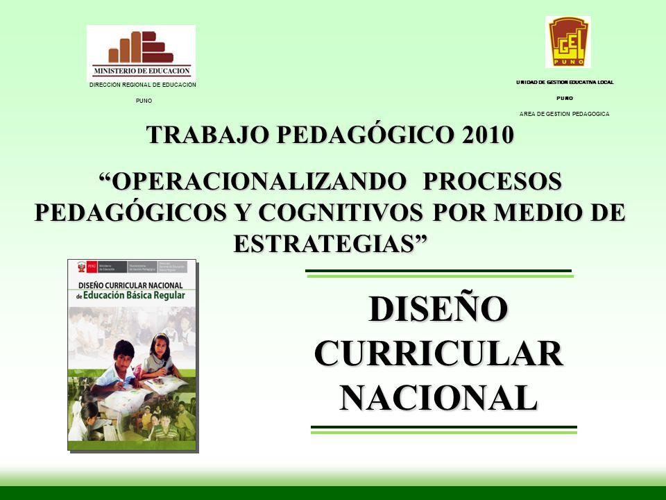 TRABAJO PEDAGÓGICO 2010 OPERACIONALIZANDO PROCESOS PEDAGÓGICOS Y COGNITIVOS POR MEDIO DE ESTRATEGIAS DISEÑO CURRICULAR NACIONAL DIRECCIÓN REGIONAL DE