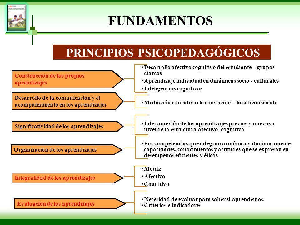 Construcción de los propios aprendizajes PRINCIPIOS PSICOPEDAGÓGICOS Desarrollo de la comunicación y el acompañamiento en los aprendizaje s Significat