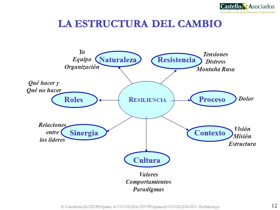 H:/Consultoría/LEATID/PROgrama de CONSOLIDACIÓN/PROgrama de CONSOLIDACIÓN - Resiliencia.ppt 12 R ESILIENCIA Naturaleza Yo Equipo Organización Resisten