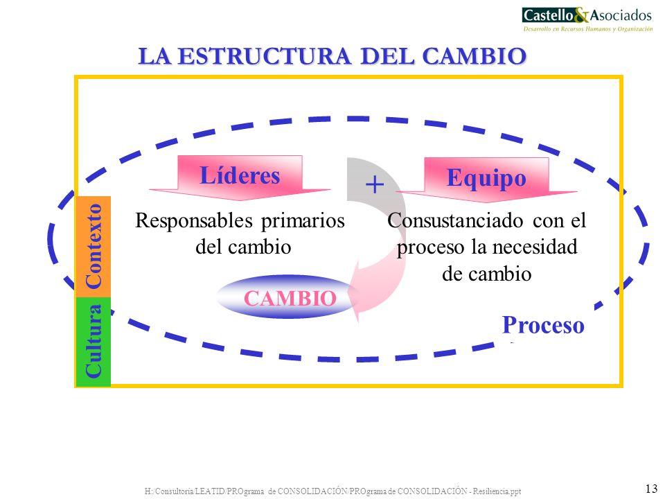 H:/Consultoría/LEATID/PROgrama de CONSOLIDACIÓN/PROgrama de CONSOLIDACIÓN - Resiliencia.ppt 13 CAMBIO Líderes Responsables primarios del cambio Equipo