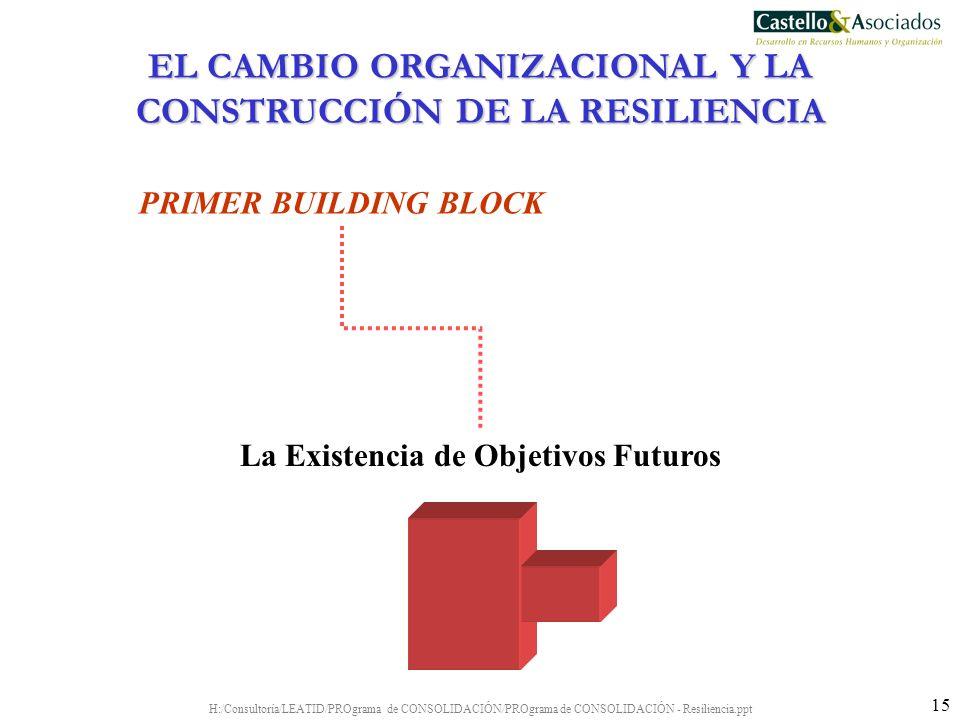 H:/Consultoría/LEATID/PROgrama de CONSOLIDACIÓN/PROgrama de CONSOLIDACIÓN - Resiliencia.ppt 15 PRIMER BUILDING BLOCK La Existencia de Objetivos Futuro
