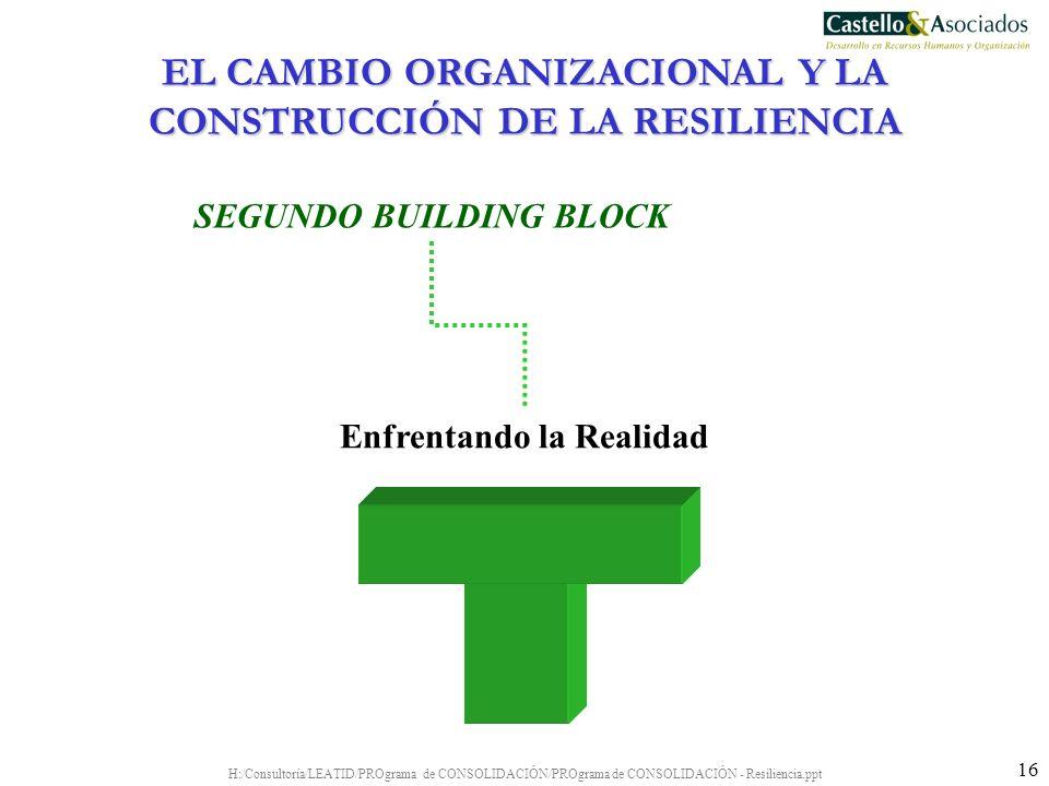H:/Consultoría/LEATID/PROgrama de CONSOLIDACIÓN/PROgrama de CONSOLIDACIÓN - Resiliencia.ppt 16 Enfrentando la Realidad SEGUNDO BUILDING BLOCK EL CAMBI
