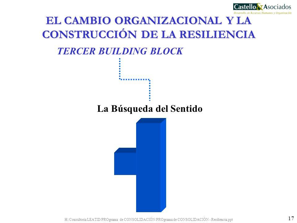 H:/Consultoría/LEATID/PROgrama de CONSOLIDACIÓN/PROgrama de CONSOLIDACIÓN - Resiliencia.ppt 17 La Búsqueda del Sentido TERCER BUILDING BLOCK EL CAMBIO