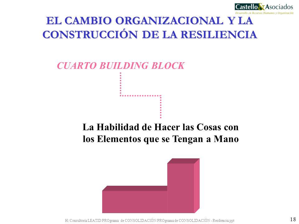 H:/Consultoría/LEATID/PROgrama de CONSOLIDACIÓN/PROgrama de CONSOLIDACIÓN - Resiliencia.ppt 18 La Habilidad de Hacer las Cosas con los Elementos que s