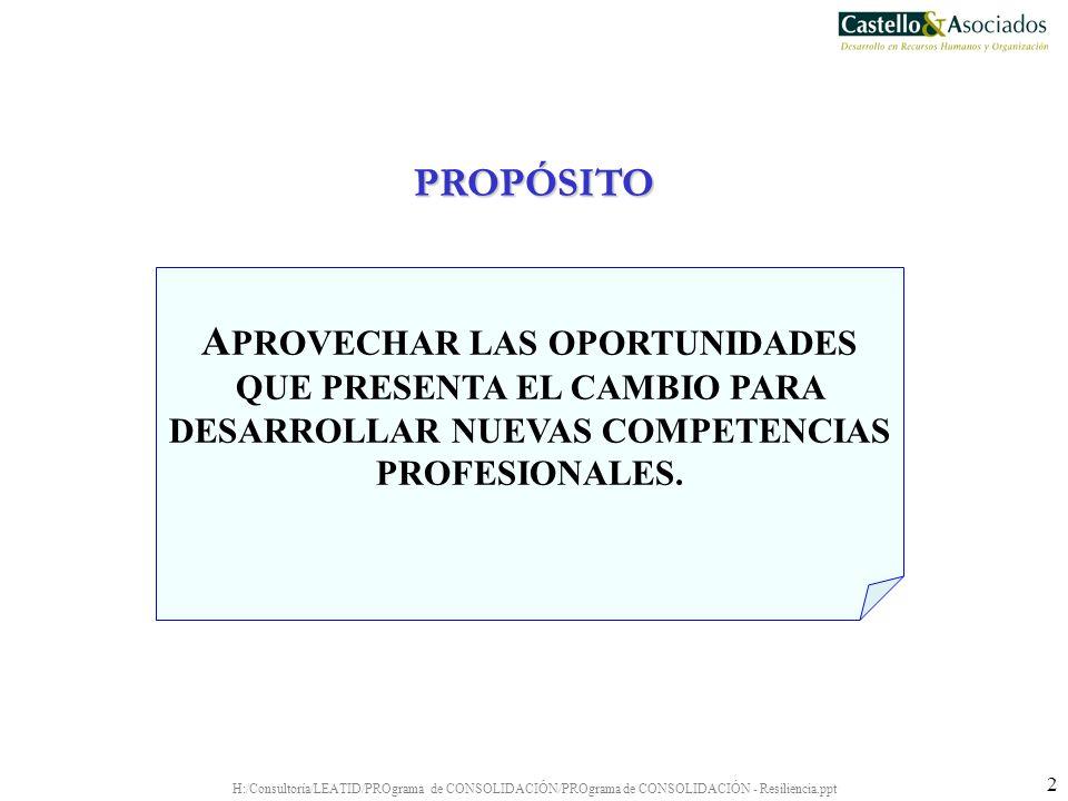 H:/Consultoría/LEATID/PROgrama de CONSOLIDACIÓN/PROgrama de CONSOLIDACIÓN - Resiliencia.ppt 33 INDIVIDUO EQUIPO EMPRESA HABILIDADES REQUERIDAS: NIVELES