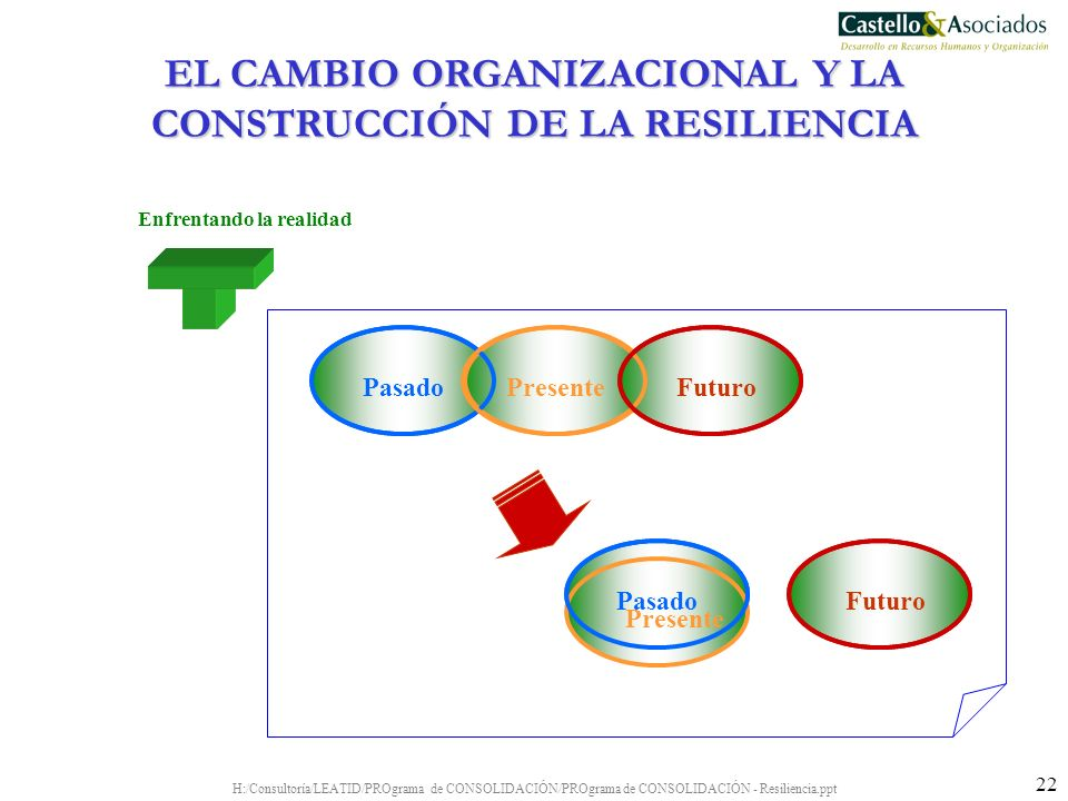 H:/Consultoría/LEATID/PROgrama de CONSOLIDACIÓN/PROgrama de CONSOLIDACIÓN - Resiliencia.ppt 22 Enfrentando la realidad Futuro PasadoPresenteFuturo Pas