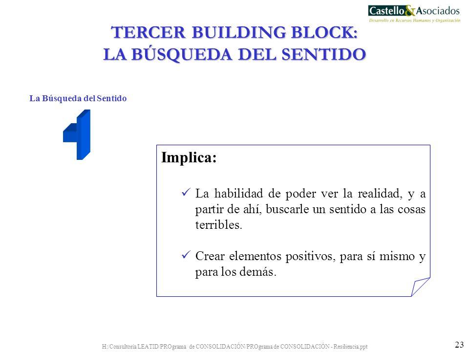 H:/Consultoría/LEATID/PROgrama de CONSOLIDACIÓN/PROgrama de CONSOLIDACIÓN - Resiliencia.ppt 23 La Búsqueda del Sentido Implica: La habilidad de poder