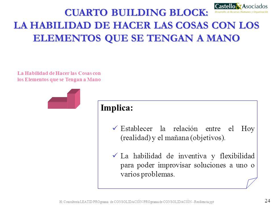 H:/Consultoría/LEATID/PROgrama de CONSOLIDACIÓN/PROgrama de CONSOLIDACIÓN - Resiliencia.ppt 24 La Habilidad de Hacer las Cosas con los Elementos que s