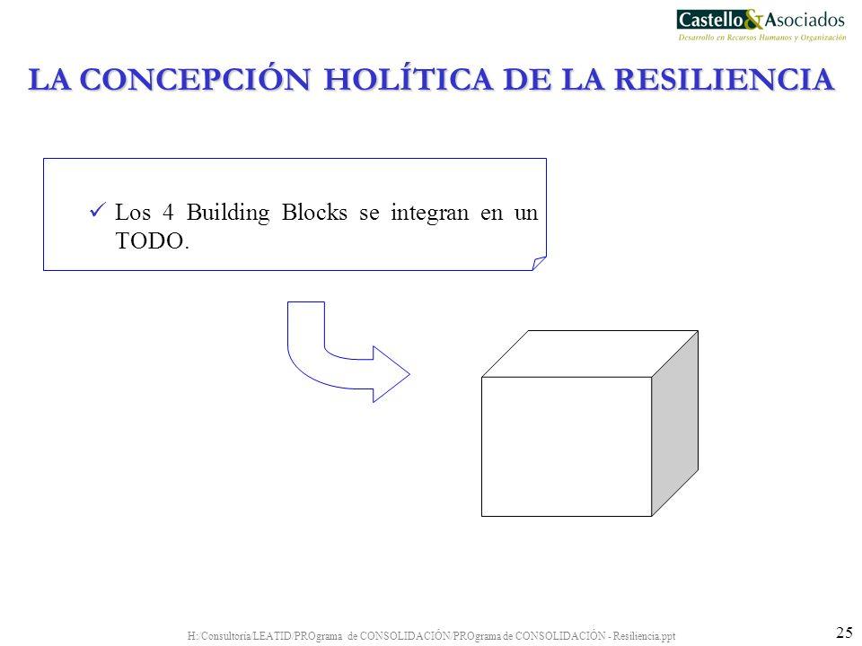 H:/Consultoría/LEATID/PROgrama de CONSOLIDACIÓN/PROgrama de CONSOLIDACIÓN - Resiliencia.ppt 25 Los 4 Building Blocks se integran en un TODO. LA CONCEP