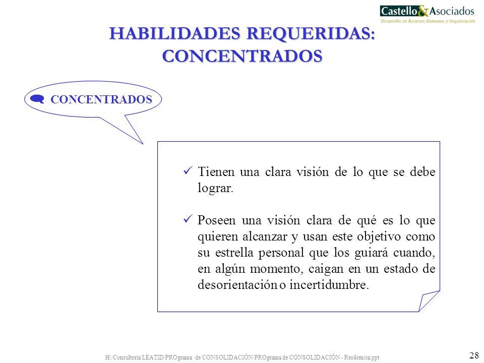 H:/Consultoría/LEATID/PROgrama de CONSOLIDACIÓN/PROgrama de CONSOLIDACIÓN - Resiliencia.ppt 28 Tienen una clara visión de lo que se debe lograr. Posee