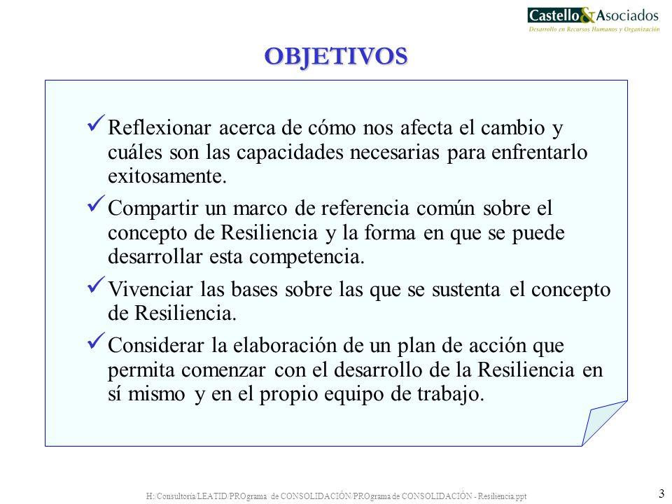 H:/Consultoría/LEATID/PROgrama de CONSOLIDACIÓN/PROgrama de CONSOLIDACIÓN - Resiliencia.ppt 24 La Habilidad de Hacer las Cosas con los Elementos que se Tengan a Mano Implica: Establecer la relación entre el Hoy (realidad) y el mañana (objetivos).