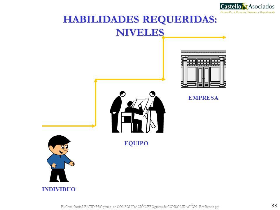 H:/Consultoría/LEATID/PROgrama de CONSOLIDACIÓN/PROgrama de CONSOLIDACIÓN - Resiliencia.ppt 33 INDIVIDUO EQUIPO EMPRESA HABILIDADES REQUERIDAS: NIVELE