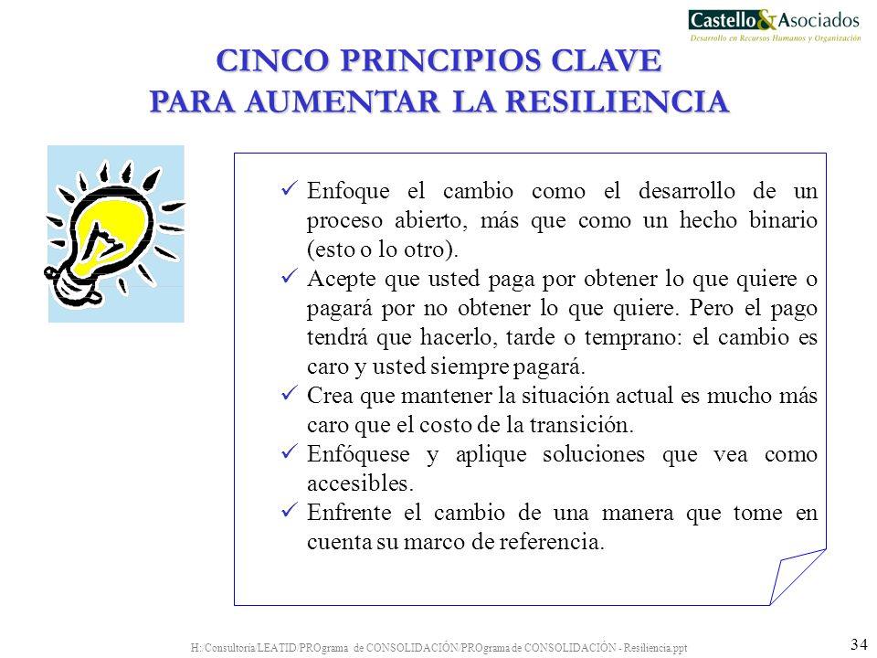 H:/Consultoría/LEATID/PROgrama de CONSOLIDACIÓN/PROgrama de CONSOLIDACIÓN - Resiliencia.ppt 34 Enfoque el cambio como el desarrollo de un proceso abie