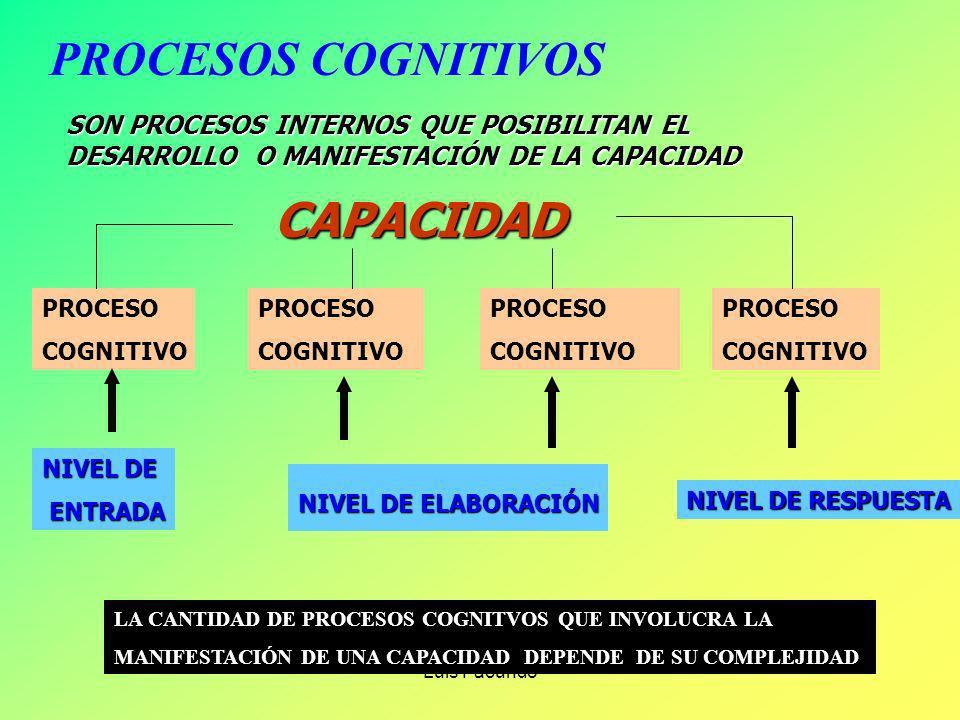 Luis Facundo LOS PROCESOS COGNITIVOS EN LOS APRENDIZAJES ESPERADOS. CUANDO APRENDEMOS SE ACTIVAN UN CONJUNTO DE PROCESOS COGNITIVOS (OPERACIONES MENTA