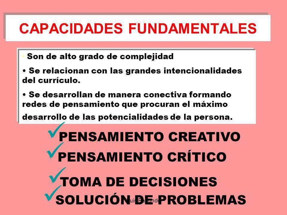 Luis Facundo EL CURRÍCULO Y LAS CAPACIDADES DEL PENSAMIENTO ElaboraDiscriminaAnticipaIdentificaAnaliza Comunica ConstruyeComparaPrediceDescubrePlanifi