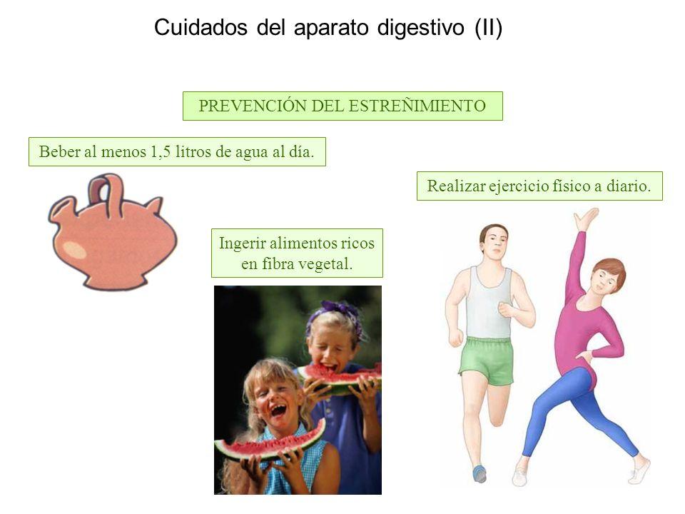 Cuidados del aparato digestivo (II) PREVENCIÓN DEL ESTREÑIMIENTO Ingerir alimentos ricos en fibra vegetal.
