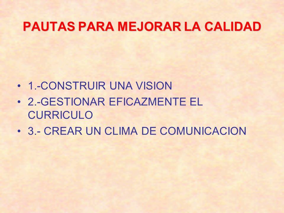 PAUTAS PARA MEJORAR LA CALIDAD 1.-CONSTRUIR UNA VISION 2.-GESTIONAR EFICAZMENTE EL CURRICULO 3.- CREAR UN CLIMA DE COMUNICACION