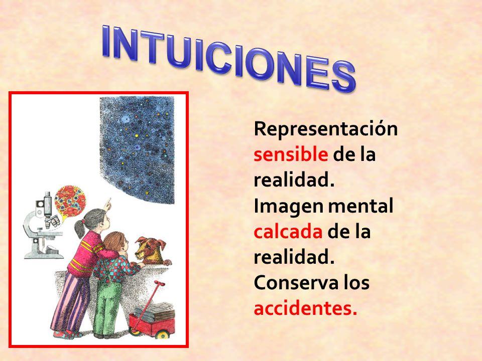 Representación sensible de la realidad. Imagen mental calcada de la realidad. Conserva los accidentes.