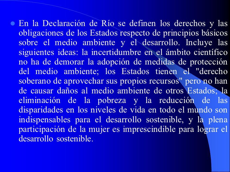En la Declaración de Río se definen los derechos y las obligaciones de los Estados respecto de principios básicos sobre el medio ambiente y el desarro