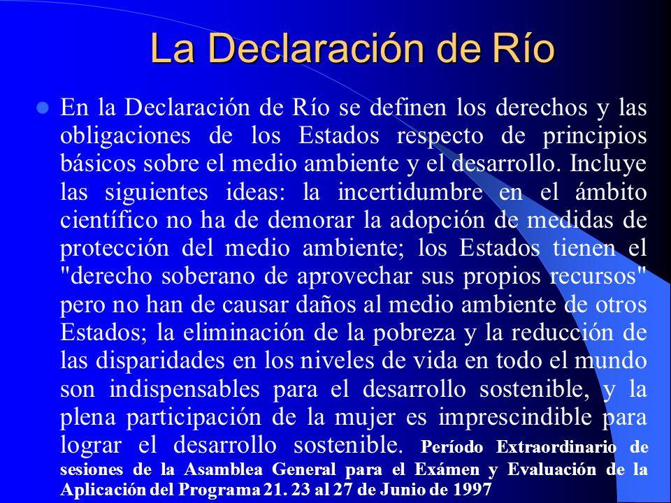 La Declaración de Río En la Declaración de Río se definen los derechos y las obligaciones de los Estados respecto de principios básicos sobre el medio