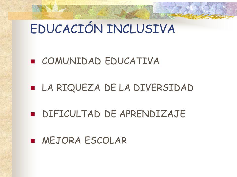 EDUCACIÓN INCLUSIVA COMUNIDAD EDUCATIVA LA RIQUEZA DE LA DIVERSIDAD DIFICULTAD DE APRENDIZAJE MEJORA ESCOLAR