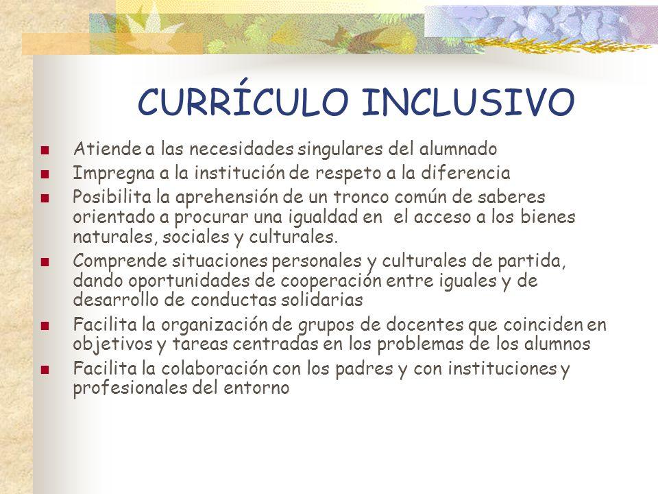 CURRÍCULO INCLUSIVO Atiende a las necesidades singulares del alumnado Impregna a la institución de respeto a la diferencia Posibilita la aprehensión d