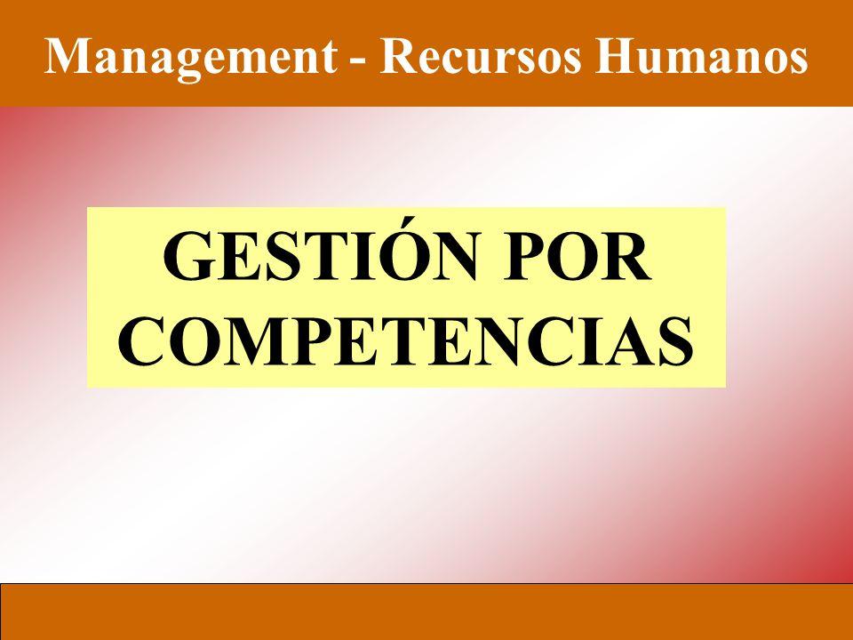 Management - Recursos Humanos UCEMA - MADE Cristina Minolli - 2005 PERFORMANCE REQUERIDA PERFORMANCE ACTUAL HaciaDesde