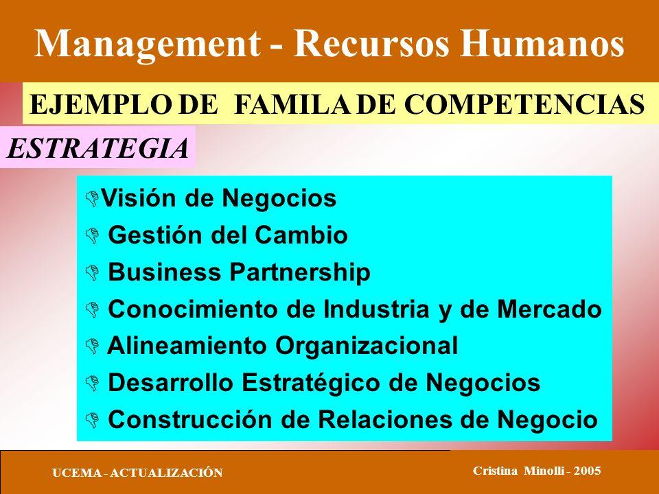 Management - Recursos Humanos UCEMA - ACTUALIZACIÓN Cristina Minolli - 2005 EJEMPLO DE FAMILA DE COMPETENCIAS ESTRATEGIA DVisión de Negocios D Gestión