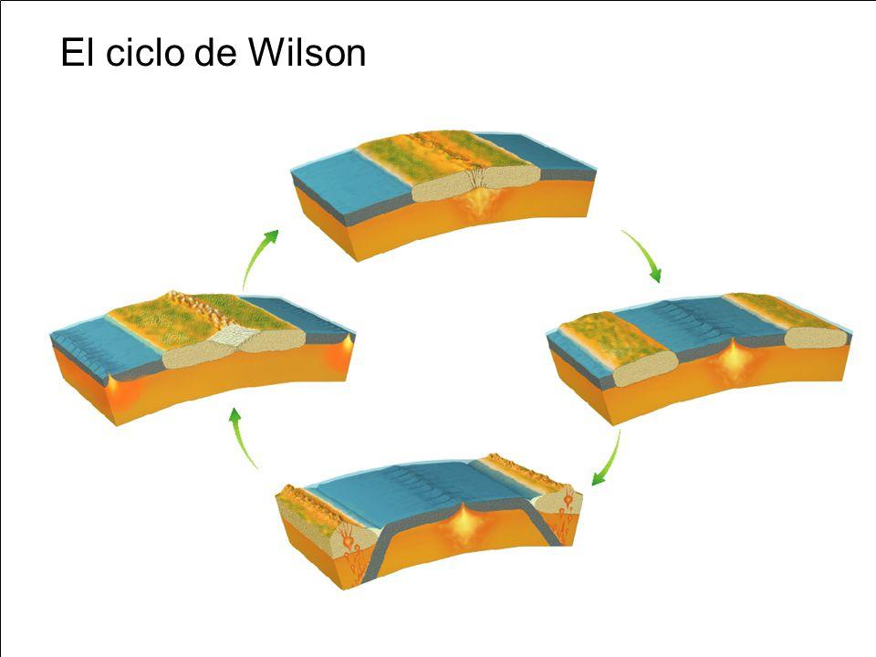 La litosfera subducida es densa y fría y las presiones del manto la hacen aún más densa.