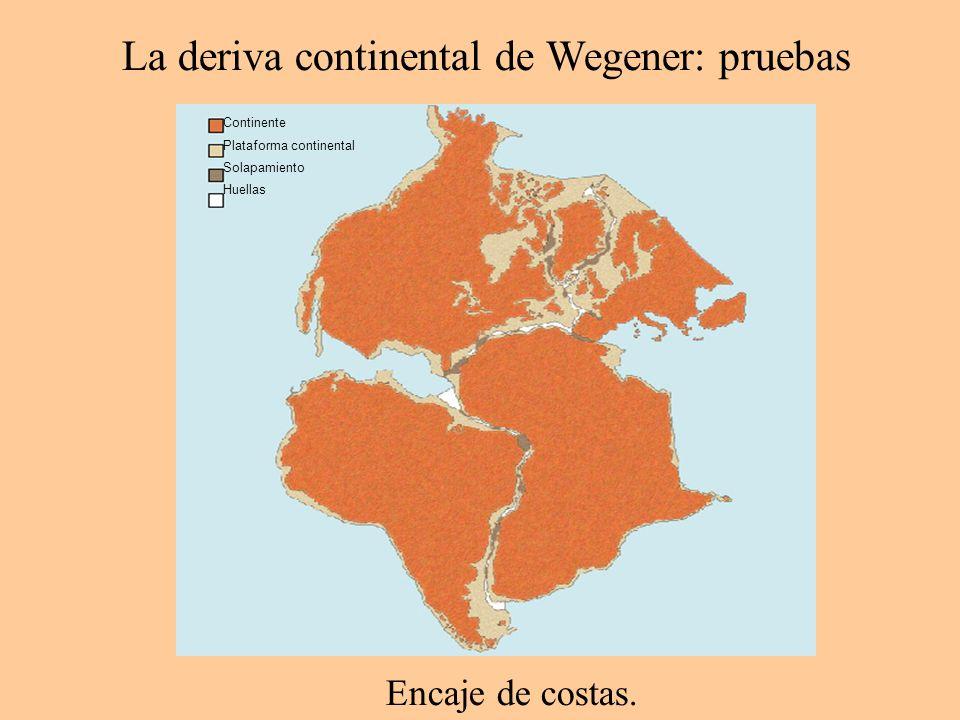 Las dorsales son lugares en los que se genera nueva litosfera oceánica a partir de materiales procedentes del interior.