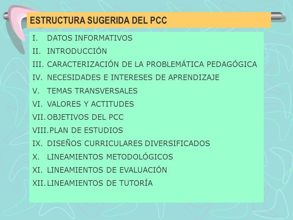 ESTRUCTURA SUGERIDA DEL PCC I.DATOS INFORMATIVOS II.INTRODUCCIÓN III.CARACTERIZACIÓN DE LA PROBLEMÁTICA PEDAGÓGICA IV.NECESIDADES E INTERESES DE APREN