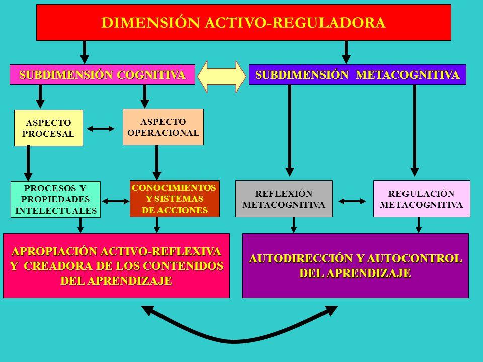 DIMENSIONES Y SUBDIMENSIONES DE UNA DIDÁCTICA PARA UN APRENDIZAJE DESARROLLADOR ACTIVACIÓN- REGULACIÓN SIGNIFICATIVIDAD MOTIVACIÓN APRENDIZAJE PRODUCT