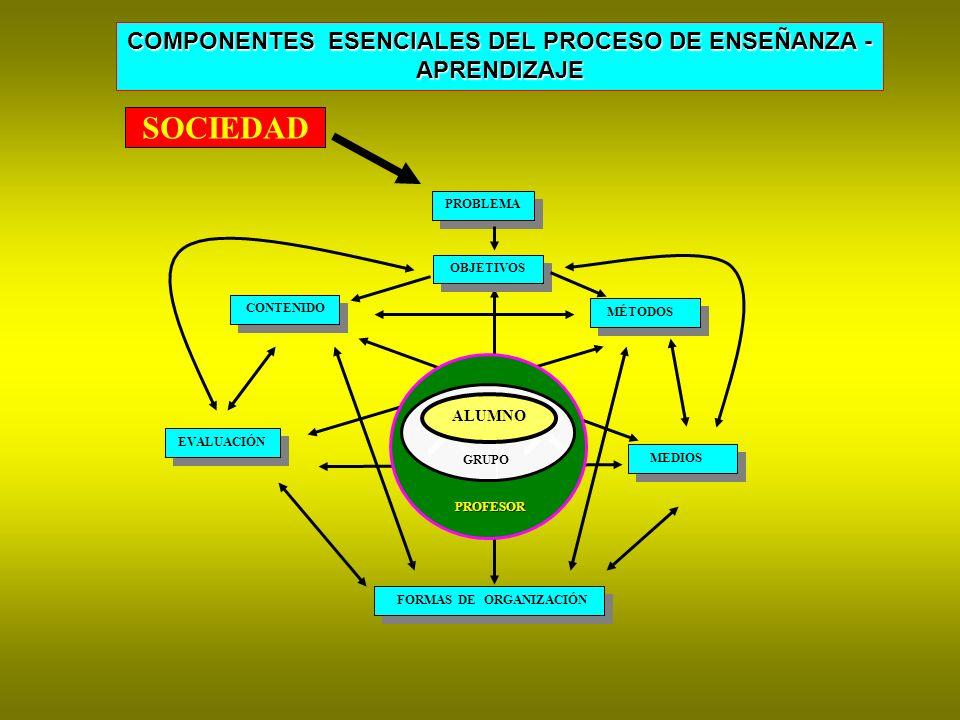 COMPONENTES ESENCIALES DEL PROCESO DE ENSEÑANZA - APRENDIZAJE APRENDIZAJE PROFESOR PROFESOR GRUPO ALUMNO PROBLEMA OBJETIVOS CONTENIDO MÉTODOS MEDIOS EVALUACIÓN FORMAS DE ORGANIZACIÓN SOCIEDAD