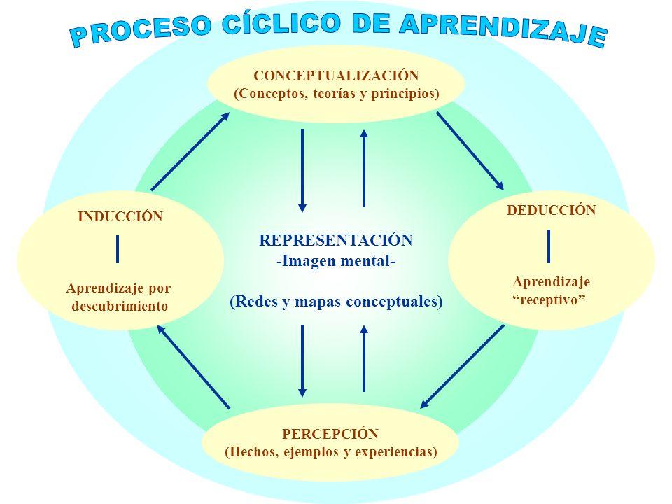 Procesos Neuropsicológicos de Aprendizaje y Modelos Educativos U3 / 19 Piaget fue uno de los primeros psicólogos que reconocieron que nacemos como pro
