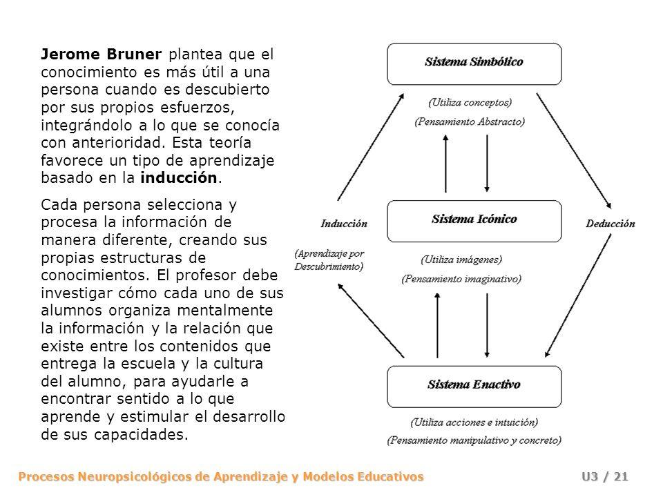 Procesos Neuropsicológicos de Aprendizaje y Modelos Educativos U3 / 20 PERCEPCIÓN (Hechos, ejemplos y experiencias) INDUCCIÓN Aprendizaje por descubri