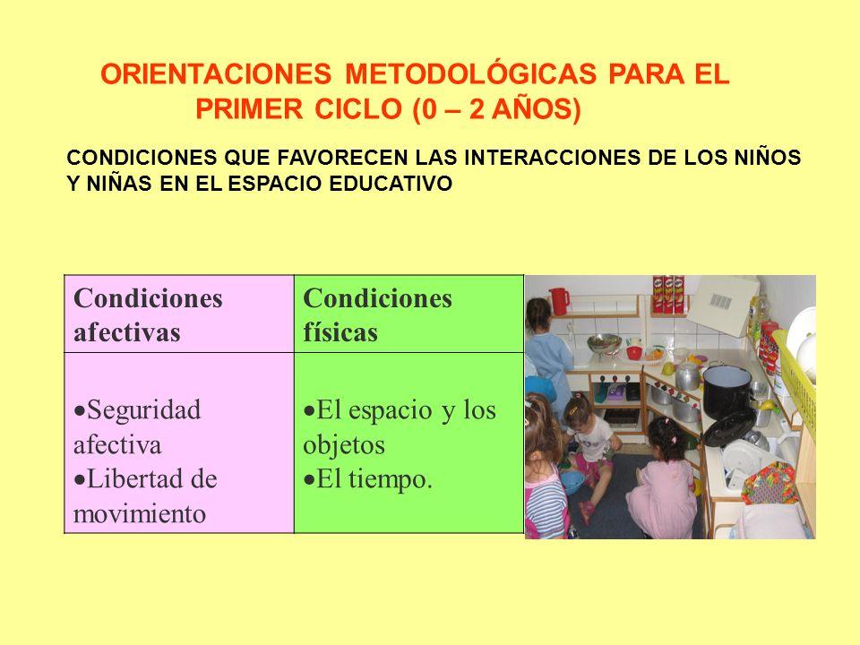 EL PLAN DE ACTIVIDADES: SUS PRINCIPIOS Principio de Significatividad Principio de Interrelacionalidad Principio de Aplicabilidad Principio de Interacción Principio de Aplicabilidad Principio de Transferencias PRINCIPIOS PLAN ACTIVIDADES