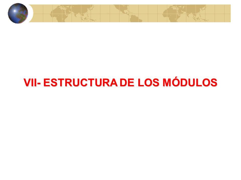 VII- ESTRUCTURA DE LOS MÓDULOS