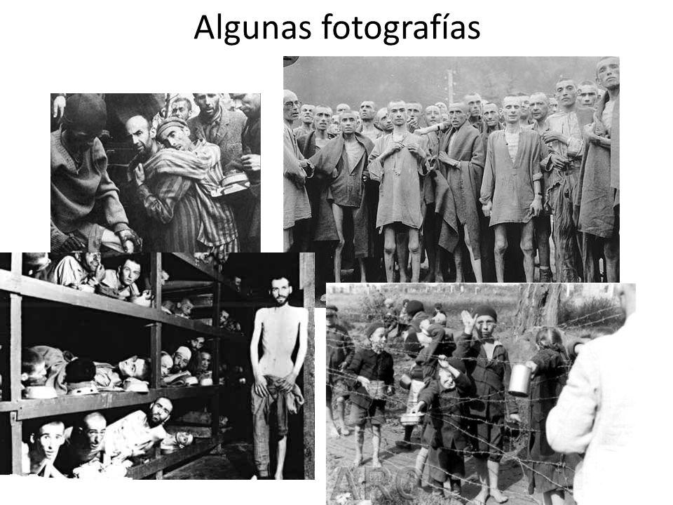 Algunas fotografías