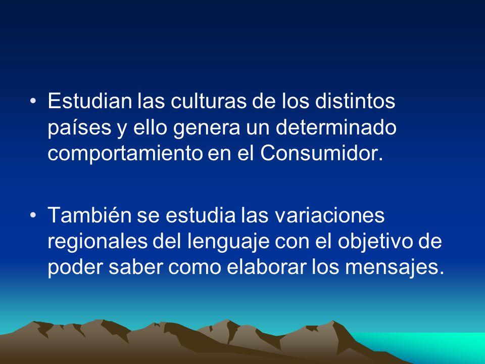 Estudian las culturas de los distintos países y ello genera un determinado comportamiento en el Consumidor. También se estudia las variaciones regiona