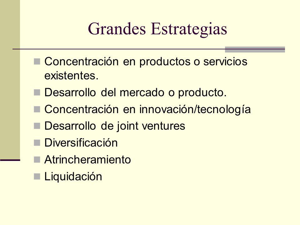 Grandes Estrategias Concentración en productos o servicios existentes. Desarrollo del mercado o producto. Concentración en innovación/tecnología Desar