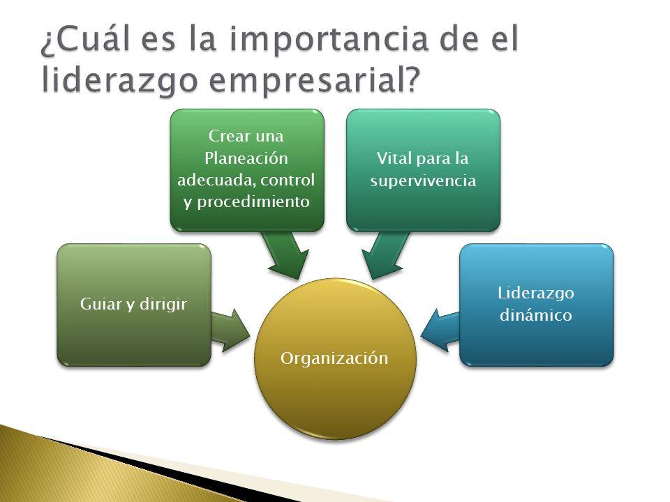 Organización Guiar y dirigir Crear una Planeación adecuada, control y procedimiento Vital para la supervivencia Liderazgo dinámico