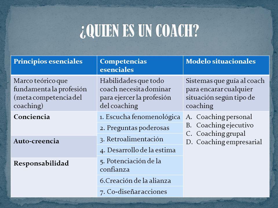 Es un profesional capacitado en ciertas técnicas, que cuenta aptitudes de comunicación y actitudes que lo hacen apto para desempeñar el rol de coach.