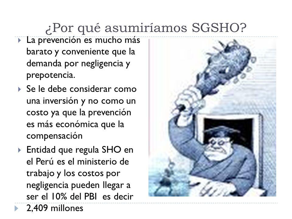¿Por qué asumiríamos SGSHO? La prevención es mucho más barato y conveniente que la demanda por negligencia y prepotencia. Se le debe considerar como u