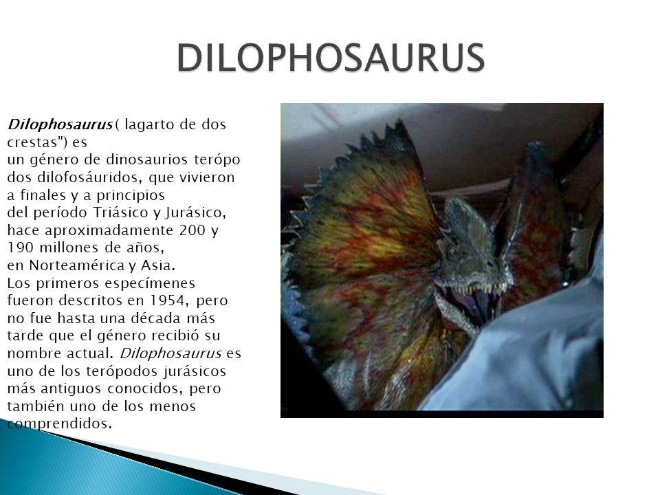 Dilophosaurus ( lagarto de dos crestas
