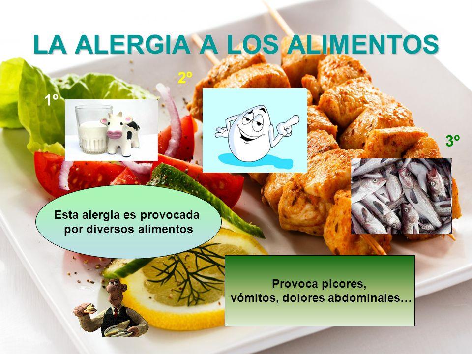 LA ALERGIA A LOS ALIMENTOS Esta alergia es provocada por diversos alimentos Provoca picores, vómitos, dolores abdominales… 1º 2º 3º